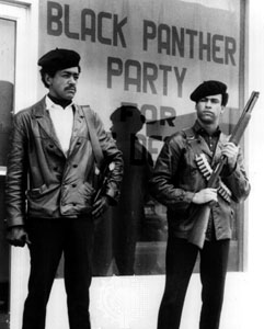 Black Panther Black Power (1990) DVD - Product Image